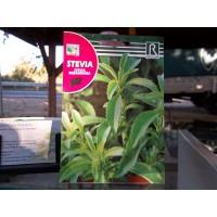 Semillas Stevia+Sustrato+Bandeja Semillero+Diptico Explicativo