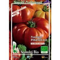 Semillas Ecológicas de Tomate Pisanello de Br