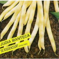 Semillas Judia Manteca de Roquencourt.250Gr