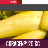 Coragen 20 SC  Insecticida Du Pont
