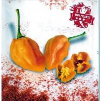 Pimiento Muy Picante de Color Naranja.chile.
