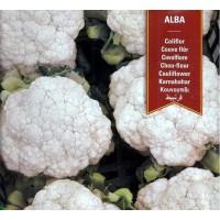 Semillas de Coliflor Alba. 4 Gr / 800 Semilla