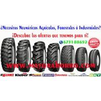Neumáticos para TODO TIPO de Vehículos al Mejor Precio y con Envíos Gratis¡¡