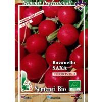 Semillas Ecológicas de Rábano Redondo Rojo Sa