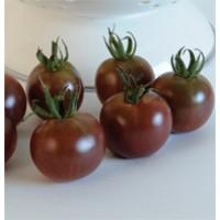 Semillas Tomate Cherry, Black Cherry. 500 Semillas