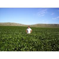 Veterinario para Trabajo Agropecuario Full Time