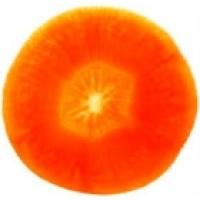 Zanahoria Corazon Rojo. 12000 Semillas