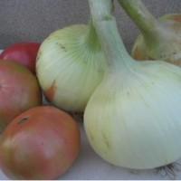 Semillas Cebolla Dolsa  100 Gr