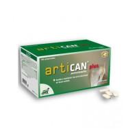 Artican Plus Antioxidantes para Problemas Art