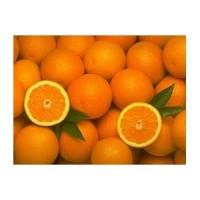 Naranjas Ecologicas 1 KG
