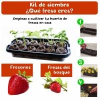 Kit de Siembra Qué Fresa Eres
