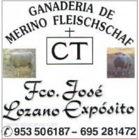 Lote de Sementales Fleischschaf Inscritos
