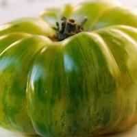 Tomate Verde ECO. Semillas Ecologicas 10 Uds.