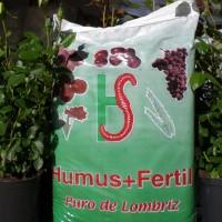 Humus+Fertil 500 Kg
