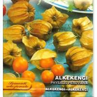 Alquenqueje Physalis Peruviana - Alkekengi. 2,5 Gr / 2500 Semillas