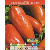 Tomate Pimiento Andine Cornue de los Andes. 0