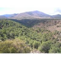 Informes Forestales, Biomasa, Planes Tecnicos, Prevencion de Incendios.