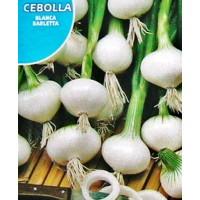 Cebolla Blanca Barletta. Envase Hermético de 4 Gr/800 Semillas.