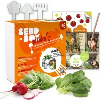 Huerto Urbano Infantil  Seedbox KIDS - Naranja