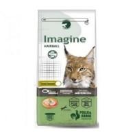 Imagine CAT Hairball Pollo&arroz Pienso para