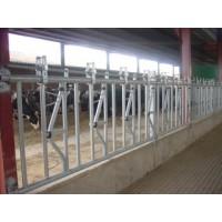 Cornadiza  Vacas  Doble Apertura