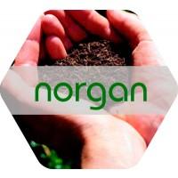 Norgan, Abono Orgánico NK Líquido de Origen Vegetal