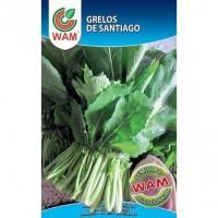 Semillas de Grelos de Santiago WAM 100 Gr