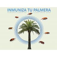 Tratamiento de Inmunizacion de Palmeras contra el Picudo Rojo