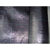 M2 de Malla Antihierba de 100X2,00 M de Ancho y 100Gr/m2