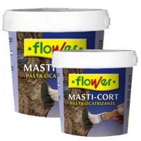 Masti-Cort. Corteza Cicatrizante 250 Gr