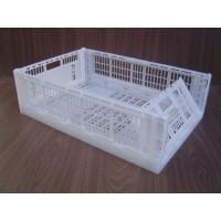 Caja Plastica Exportacion