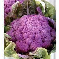 Bróculi Violet de Sicile. Envase 5 Gr.