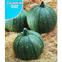 Calabacin Redondo de Niza. Envase Hermético de 10 Gr/80 Semillas.