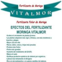 Fertilizante Moringa Vitalmor Ecológico