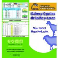 Software Ganadero para Ovino de Leche/carne