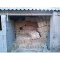Vendo Pacas de PAJA de Cereal Pequeñas