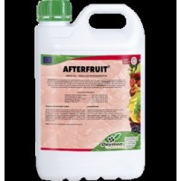 Afterfruit, Corrector de Carencias Daymsa