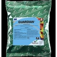 Guardian, Producto Natural para Favorecer el Desarrollo de las Hortícolas Daymsa