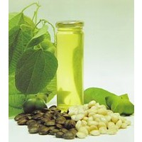 Omega  100%  Vegetal