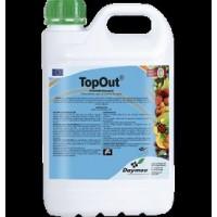 Topout, Producto Natural para el Desarrollo de los Cultivos Leñosos Daymsa
