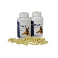 Colaid Suplemento para el Mantenimiento de la Salud Intestinal en Perros - 90 Cápsulas