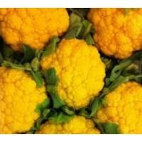 Planta Coliflor Naranja en Bandeja de 6 Unidades