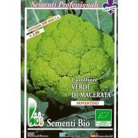 Semillas Ecologicas de Coliflor Verde Macerata - 250 Semillas
