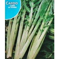 Cardo Sin Pinchos.lleno de España. Envase Hermético de 6 Gr/120 Semillas.