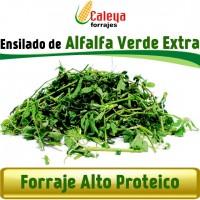 Ensilado de Alfalfa Verde Extra