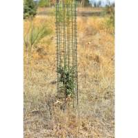 Protector Cactus (Verde) 120X35