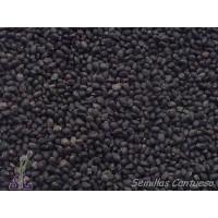 Semillas Albahaca de Bola/hoja Pequeña Ocymum