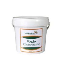 Agrobeta Pasta Cicatrizante