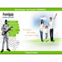 Desratizaciones y Fumigaciones Rancagua. Control de Plagas Urbanas y Sanitizacion en Rancagua, Rengo y San Fernando