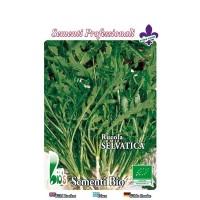 Rucula Selvatica - 100 Gr - Semillas Ecológic